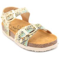 Chaussures Fille Sandales et Nu-pieds Plakton lisa Multicolore
