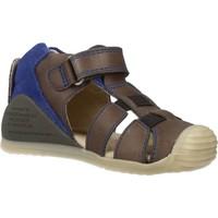 Chaussures Garçon Sandales et Nu-pieds Biomecanics 182147 Gris