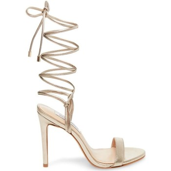 Chaussures Femme Sandales et Nu-pieds Steve Madden SMSLEVEL-MET Sandales Femme or or