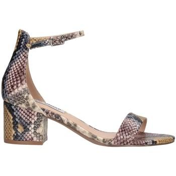 Chaussures Femme Sandales et Nu-pieds Steve Madden SMSIRENEE-MLTSNK multicolore