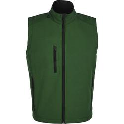 Vêtements Homme Polaires Sols RALLYE SPORT MEN Verde