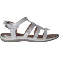 Chaussures Femme Sandales et Nu-pieds Geox D72R6A 000MA D SANDAL Plateado