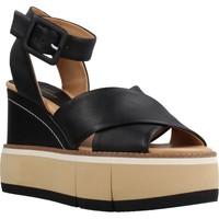Chaussures Femme Sandales et Nu-pieds Paloma Barcelò 94534 Noir
