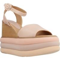 Chaussures Femme Sandales et Nu-pieds Paloma Barcelò ROSIE Rose