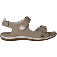 Chaussures Femme Sandales sport Geox D52R6A 000EK D SANDAL Beige