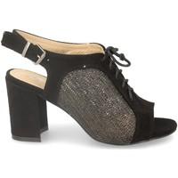 Chaussures Femme Sandales et Nu-pieds Festissimo F20-29 Negro