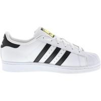 Chaussures Garçon Baskets basses adidas Originals Superstar Junior Blanc