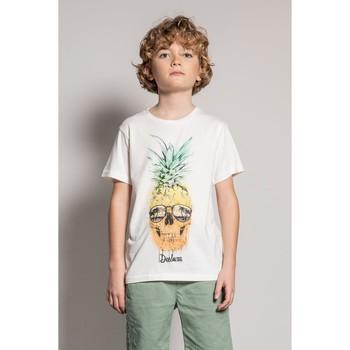 Vêtements Garçon T-shirts manches courtes Deeluxe T-Shirt EDDY Natural
