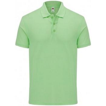 Vêtements Homme Polos manches courtes Fruit Of The Loom 63044 Vert pâle