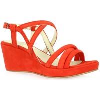 Chaussures Femme Sandales et Nu-pieds Exit Nu pieds cuir velours rouge
