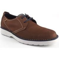 Chaussures Homme Derbies Baerchi Chaussure homme  3670 cuir Marron