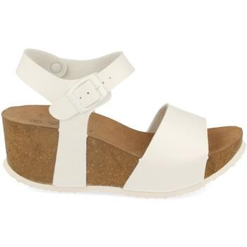 Chaussures Femme Sandales et Nu-pieds Silvian Heach M-77 Blanco