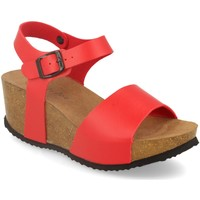 Chaussures Femme Pantalons fluides / Sarouels Silvian Heach M-77 Rojo