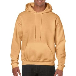 Vêtements Homme Sweats Gildan Hooded Jaune or
