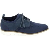 Chaussures Homme Derbies & Richelieu Schmoove Echo Derby Marine Bleu