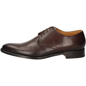 Chaussures Homme Derbies Campanile 2983 MARRON