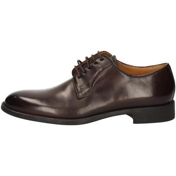 Chaussures Homme Derbies Campanile 2637 MARRON