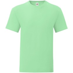Vêtements Homme T-shirts manches courtes Fruit Of The Loom Iconic Vert pâle