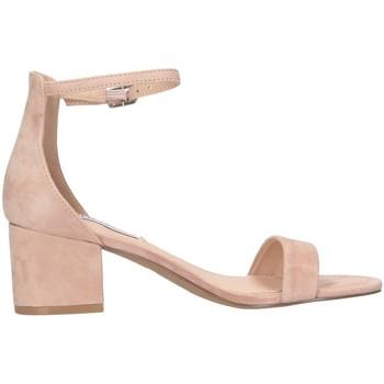 Chaussures Femme Sandales et Nu-pieds Steve Madden SMSIRENEE-NUD nu