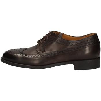 Chaussures Homme Derbies Campanile 1200 MARRON