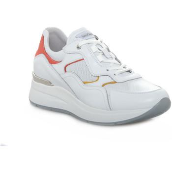 Chaussures Femme Baskets basses NeroGiardini 707 SKIPPER BIANCO Bianco