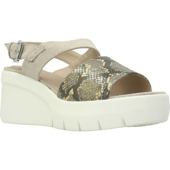 Chaussures Femme Sandales et Nu-pieds Geox D TORRENCE A Multicolore