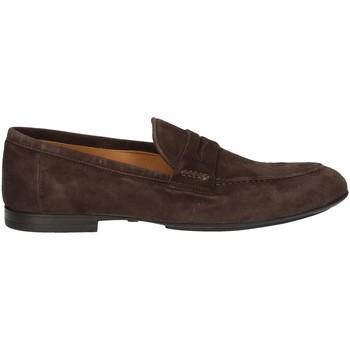 Chaussures Homme Mocassins Campanile T9783S MARRON
