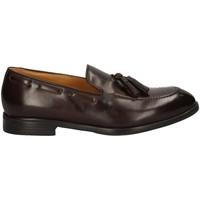 Chaussures Homme Mocassins Campanile 192 MARRON