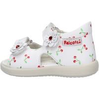 Chaussures Garçon Chaussures aquatiques Falcotto - Sandalo bianco SHAMAL-0N01 BIANCO