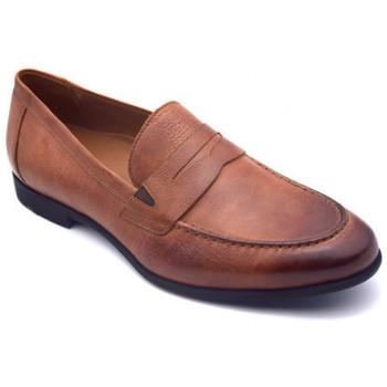 Chaussures Homme Mocassins Lloyd roddy Marron
