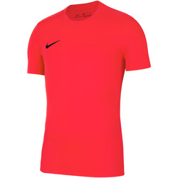Vêtements Homme T-shirts manches courtes Nike Dry Park VII SS Jersey Rot