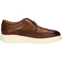Chaussures Homme Baskets basses Campanile BROGUE MARRON