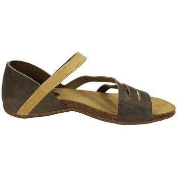 Chaussures Femme Sandales et Nu-pieds Interbios  Vert