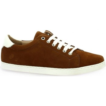 Chaussures Femme Baskets basses So Send Derby cuir velours Cognac
