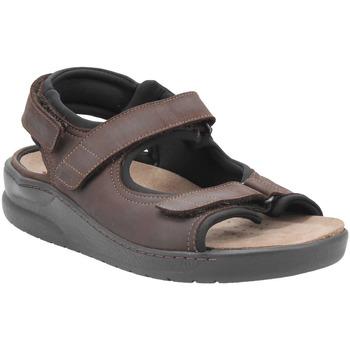 Chaussures Homme Sandales et Nu-pieds Mobils VALDEN MARRON