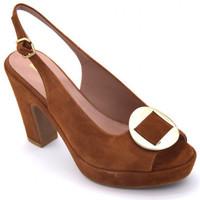 Chaussures Femme Sandales et Nu-pieds Gianmarco Sorelli 2040 Marron
