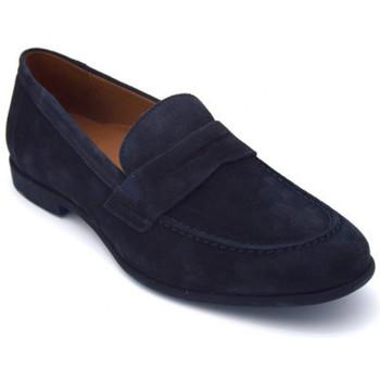 Chaussures Homme Mocassins Lloyd roddy Bleu