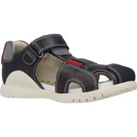 Chaussures Garçon Sandales et Nu-pieds Biomecanics 202185 Gris