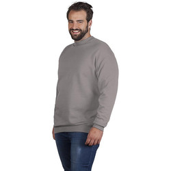 Vêtements Sweats Promodoro Sweat interlock unisexe grandes tailles pomotion gris