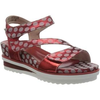 Chaussures Femme Sandales et Nu-pieds Laura Vita dicezeo 032 rouge