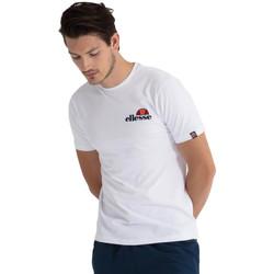 Vêtements Homme T-shirts manches courtes Ellesse T-shirt Voodoo blanc