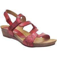 Chaussures Femme Sandales et Nu-pieds Xapatan 2164 Rouge cuir