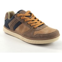 Chaussures Homme Baskets basses Sweden Kle Chaussure homme  203526 toasted Marron