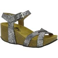 Chaussures Femme Sandales et Nu-pieds Plakton 275087 argent