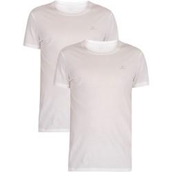 Vêtements Homme T-shirts manches courtes Gant Lot de 2 t-shirts à col rond Lounge blanc