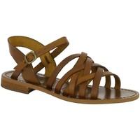 Chaussures Femme Sandales et Nu-pieds Iota ROTTA MARRON