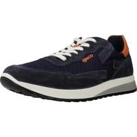Chaussures Homme Baskets basses IgI&CO 5127422 Bleu