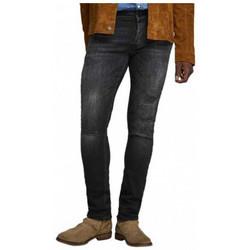 Vêtements Homme Jeans skinny Jack & Jones GLENN Pantalons Multicolore