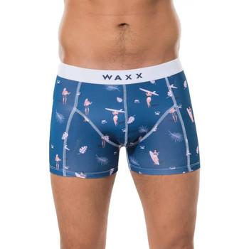 Sous-vêtements Homme Boxers Waxx Boxer SURFING Bleu