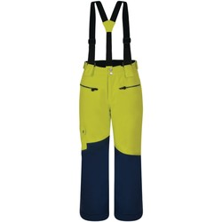 Vêtements Enfant Pantalons Dare 2b Salopette ski Junior TIMEOUT Vert